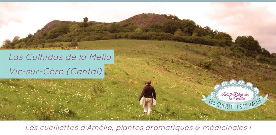Les cueillettes d'Amélie, tisanes et infusions naturelles