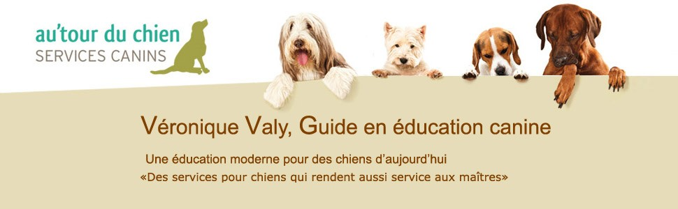 Au'tour du Chien : Centre d'activités canines